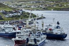 Dänemark,Färöer Inseln,Eysturoy,Hafen von Runavik,Denmark, Faroe Islands, Eysturoy, Runavik harbor